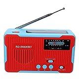 Weikeya Rd-666WBT Solar Angetrieben Hand Kurbel Radio, 76-108 MHz 3X AAA Batterien 2300mah Kurbel Radio mit Abs zum Draussen Überleben und Haushalt Notfall