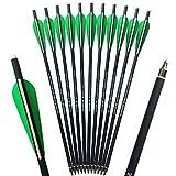 SHARROW 18pcs Armbrustbolzen 16 Zoll Armbrustpfeile 17 Zoll Carbonpfeile Bolzen für Armbrust Grün (Grün, 16')