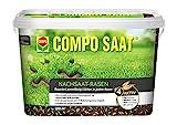 Compo SAAT Nachsaat-Rasen, Spezielle Nachsaat-Mischung mit wirkaktivem Keimbeschleuniger, 2 kg, 100 m²