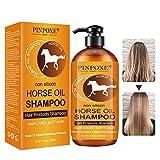 Haarshampoo, Haarpflege Shampoo, Horse Oil Shampoo, Haarwachstums Shampoo, Anti-Haarverlust Shampoo,Effektiv gegen Haarausfall, Natürliche Haarpflege Shampoo Wachstum für Damen & Herren 300ml