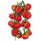 LOVIVER 5Pcs Künstliche Obst Und Gemüse Kunstobst Kunstgemüse Kunststoffe Deko - Tomate, One Size