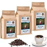 Kaffee Globetrotter - Kaffee Mit Herz - Nicaragua Fancy Flores del Cafe - 3 x 1000 g Ganze Bohnen - Spitzenkaffee Aus Nicaragua Fair Gehandelt Unterstützt Soziale Projekte