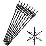 SHARROW 12 x Armbrustbolzen 20 Zoll Carbonpfeile Armbrustpfeile 22 Zoll Bolzen für Armbrust mit Klinge Broadhead Pfeilspitzen 4' Pfeilfedern für Armbrust Bogen(Schwarz, 20')